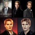 Carlisle - esme-and-carlisle-cullen fan art
