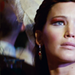 Catching Fire - the-hunger-games icon