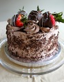 Dark Chocolate Cake  - chocolate photo