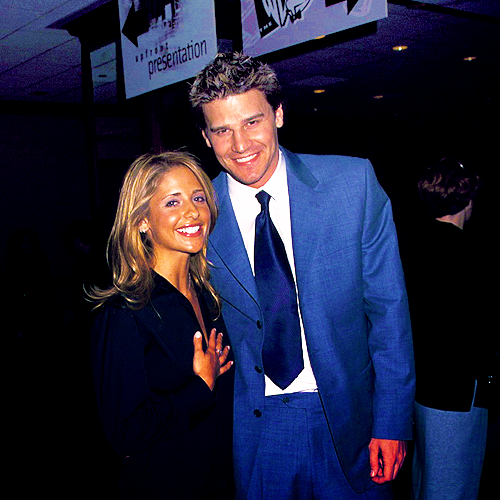 David Boreanaz couple