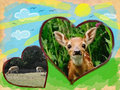 Deer Collage - wild-animals fan art