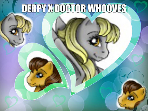 Derpy x Doctor whooves
