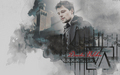 Dimitri Belikov - the-vampire-academy-blood-sisters wallpaper