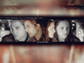 edward-and-bella - Edward+Bella wallpaper