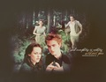 Edward+Bella - edward-and-bella photo
