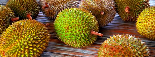 Foods of indonesia