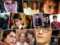 HP - harry-potter wallpaper