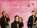 Happy Anniversary - Paul & Torrey ♥ - paul-wesley-and-torrey-devitto wallpaper
