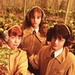 Harry, Hermione and Ron - hermione-granger icon