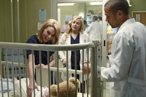 Hilarie полиспаст, бертон Grey's Anatomy Promos