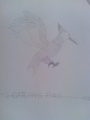 My Mockingjay - the-hunger-games fan art