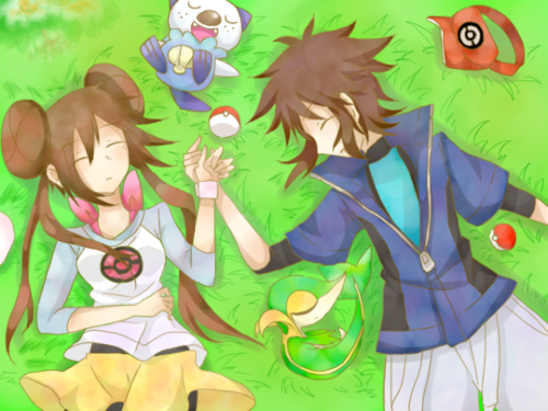 Pokemon Nate Pokemon Team Images | Pokemon Images