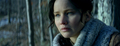 New official 'Catching Fire' movie still [HQ] - katniss-everdeen photo