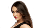 Nikki Bella - wwe-divas photo