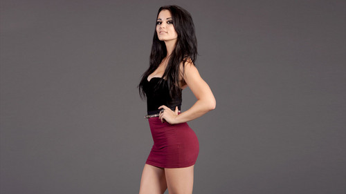 WWE Divas wallpaper possibly with a leotard, tights, and a bustier entitled Paige