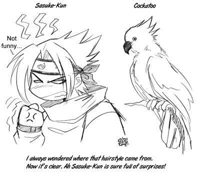 Sasuke's Hairstyle