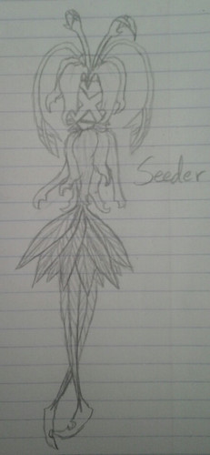Seeder Nobody