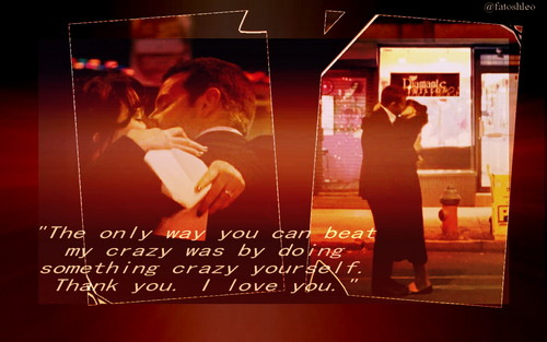 Silver Linings Playbook wallpaper entitled Silver Linings Playbook wallpaper