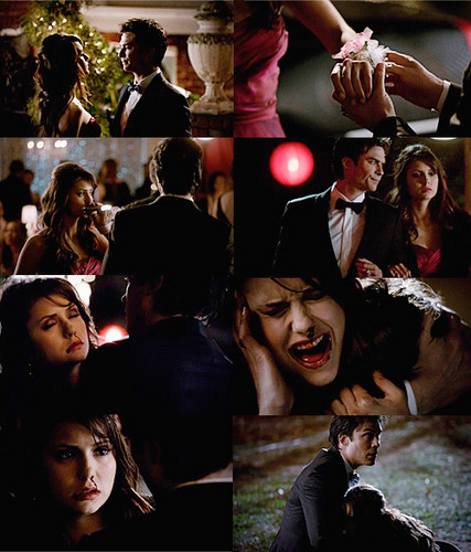 "The Vampire Diaries 4x19 ""Pictures of You"""