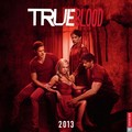 True Blood Season 6 Promo - true-blood photo