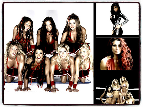 WWE Divas achtergrond called WWE Divas