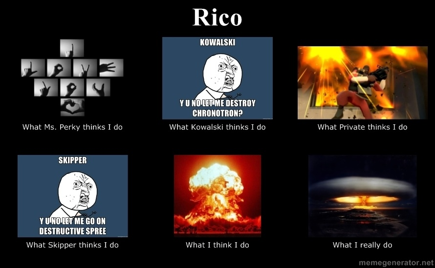 What Rico does