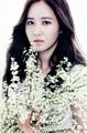 Yuri ~ - kwon-yuri photo