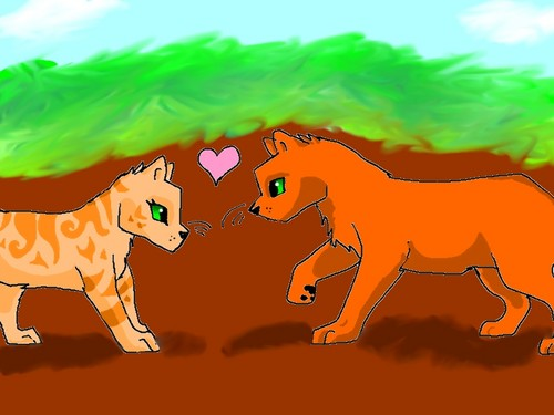 Scribbling Cats  Alternative Au in which Fireheart is the