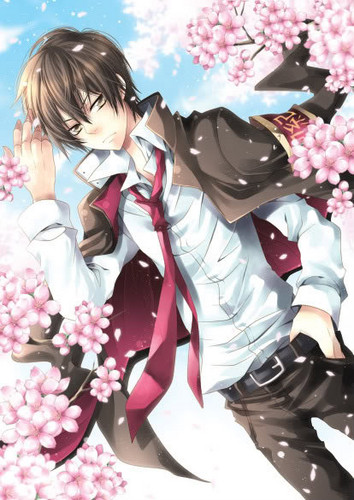 Hibari Kyoya wallpaper with a bouquet called hibari x sakura