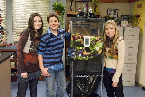 iCarly वॉलपेपर possibly containing a bouquet entitled iCarly