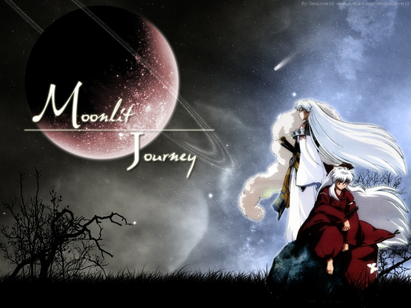 inuyasha images inuyasha and sesshomaru hd wallpaper and