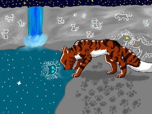 leafpools meeting with starclan