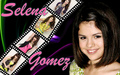 selly wallpaper - selena-gomez wallpaper