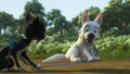 *Gasp* - disneys-bolt photo