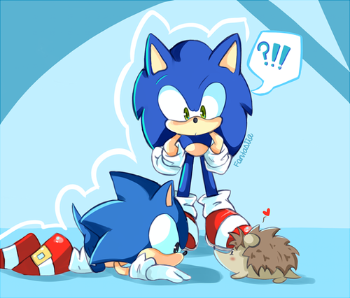 3 Hedgehogs