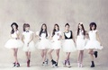 A Pink ~ - korea-girls-group-a-pink photo