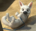 Boltie &lt;3 - disneys-bolt photo