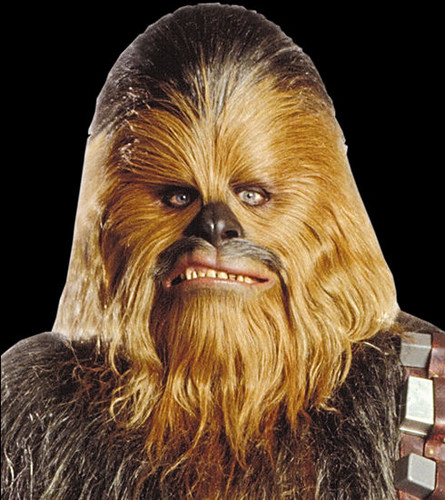 chewbacca images chewbacca wallpaper and background photos