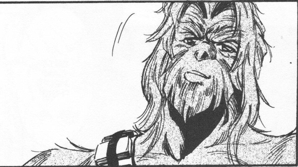 http://images6.fanpop.com/image/photos/34300000/ESB-Manga-chewbacca-34355437-957-538.jpg