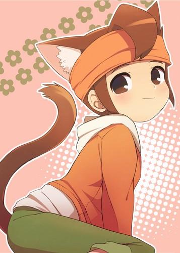 Endou kitty