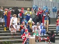 Epic cosplay - super-smash-bros-brawl photo