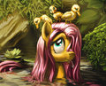 Fluttershy - my-little-pony-friendship-is-magic fan art