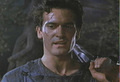 Good Ash - bruce-campbell photo
