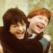 HP♥ - harry-potter icon
