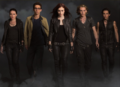 HQ Cast Photo - mortal-instruments photo