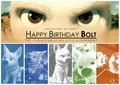 Happy Birthday Bolt!