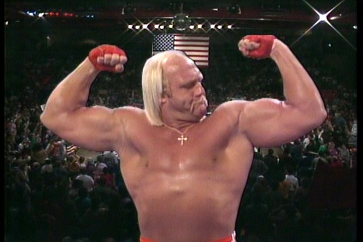 Hogan Hulk