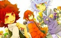 IE  :3  - inazuma-eleven photo