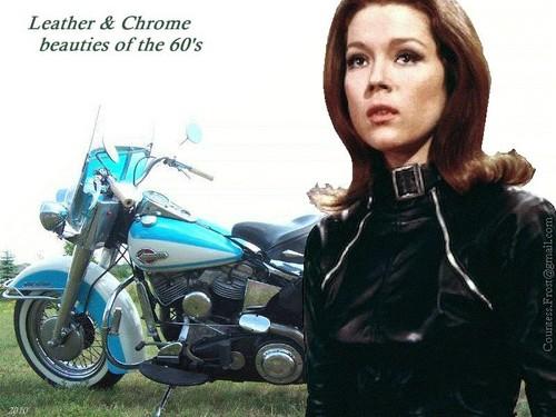 Leather & Chrome