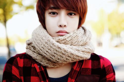 Lee Hoon chi